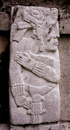 ArctAntarct Palenque