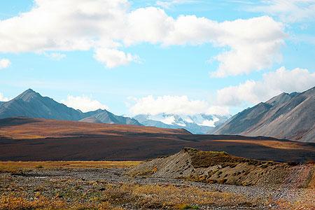 ArcticaAntarctica Alaska